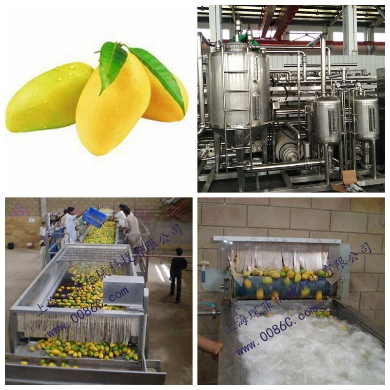 Paste Processing Line Mango Processing Line Plant In PET Glass Packing